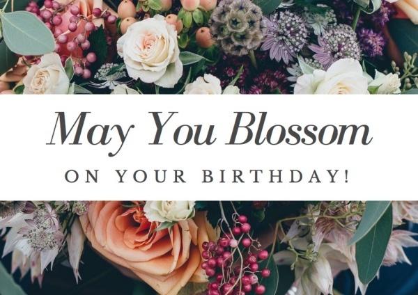 succulents birthday card pop shop america_small