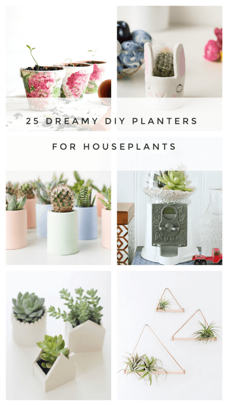 25 diy planters for small houseplants and terrariums