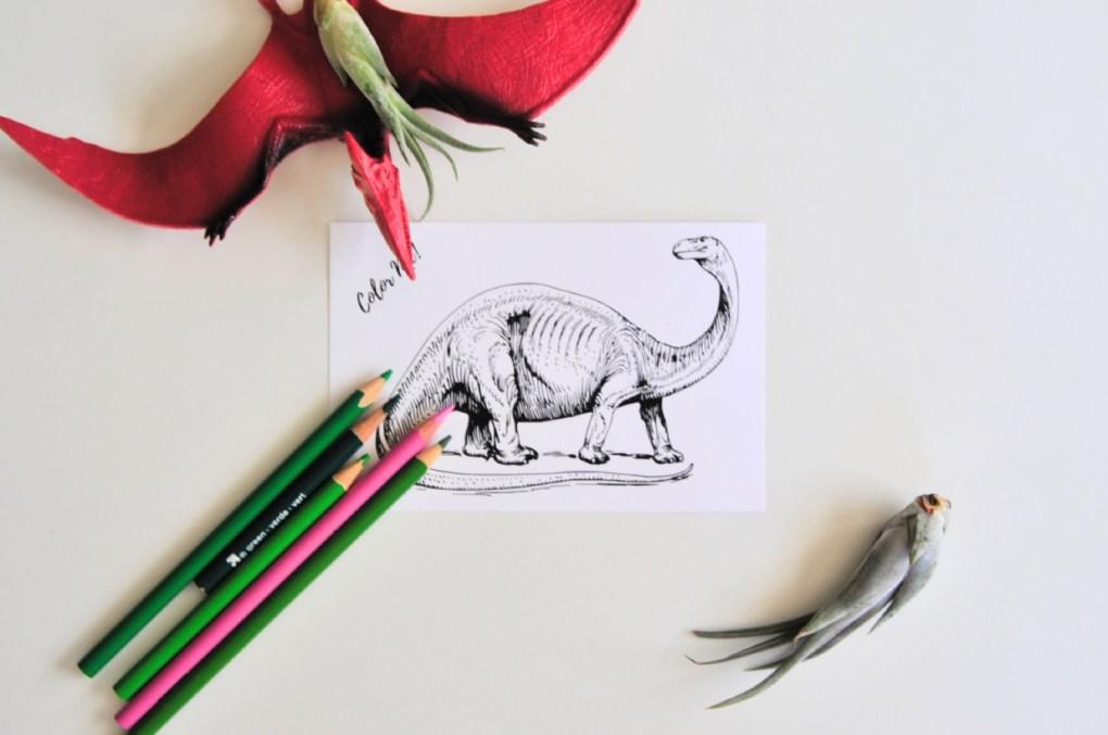 dinosaur adult coloring postcard pop shop america