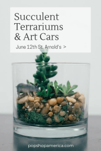 succulent terrariums and art cars at st arnolds diy downtown pop shop america