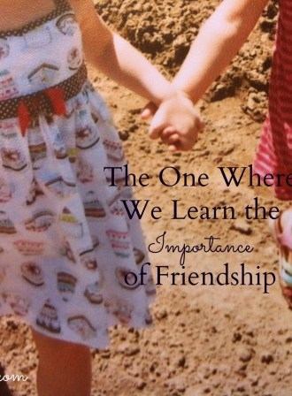 The One Where We Learn the Importance of Friendship