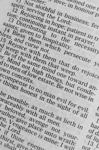 Drink, Pray, Love – Bible Study