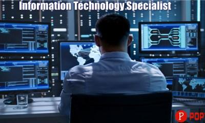 Information Technology Specialist
