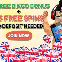 Growing Craze For Best Bingo Sites UK