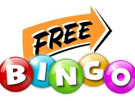 What Free Bingo Is All About?