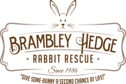 Brambley Hedge Rabbit Rescue