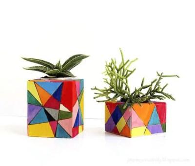 Macetas de madera para plantas crasas