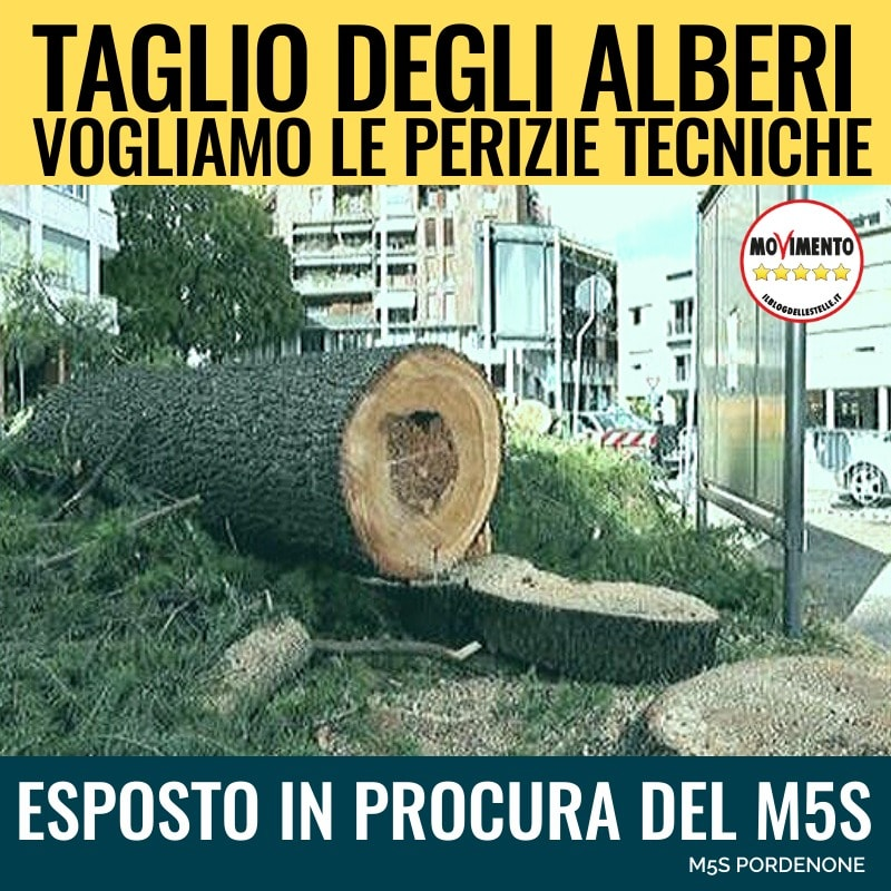 Abbattimento alberi: il nostro esposto in Procura
