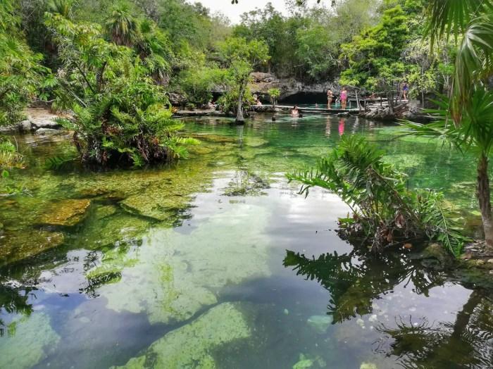 Cenote Azul en Playa del Carmen