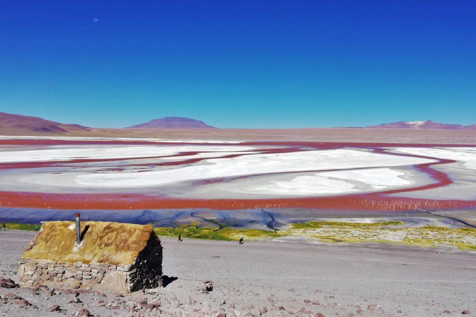 Laguna Colorada en Uyuni.