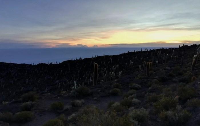 Isla Incahuasi, en el día 3 del tour por Uyuni.