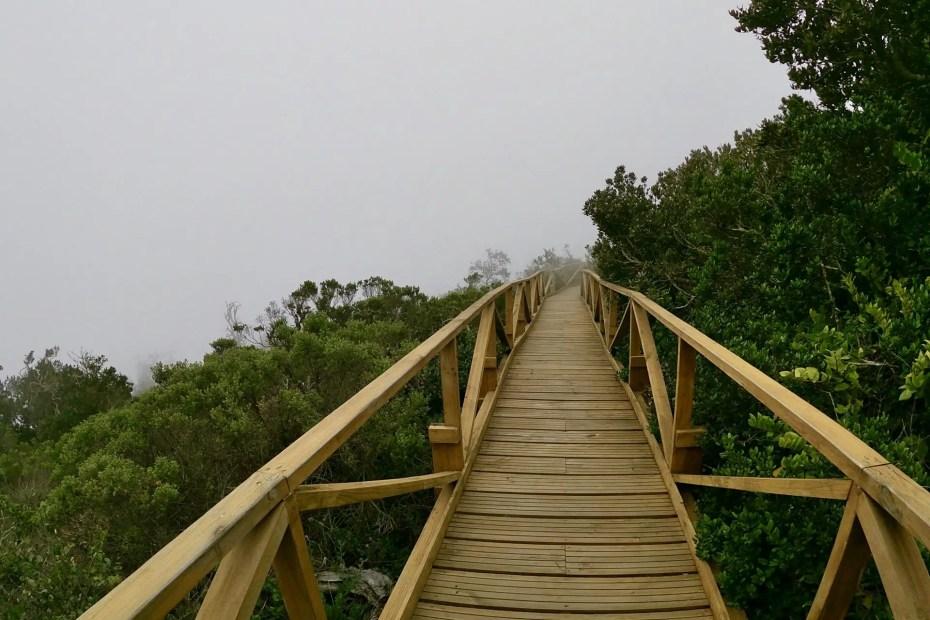 Parque Nacional Fray Jorge.