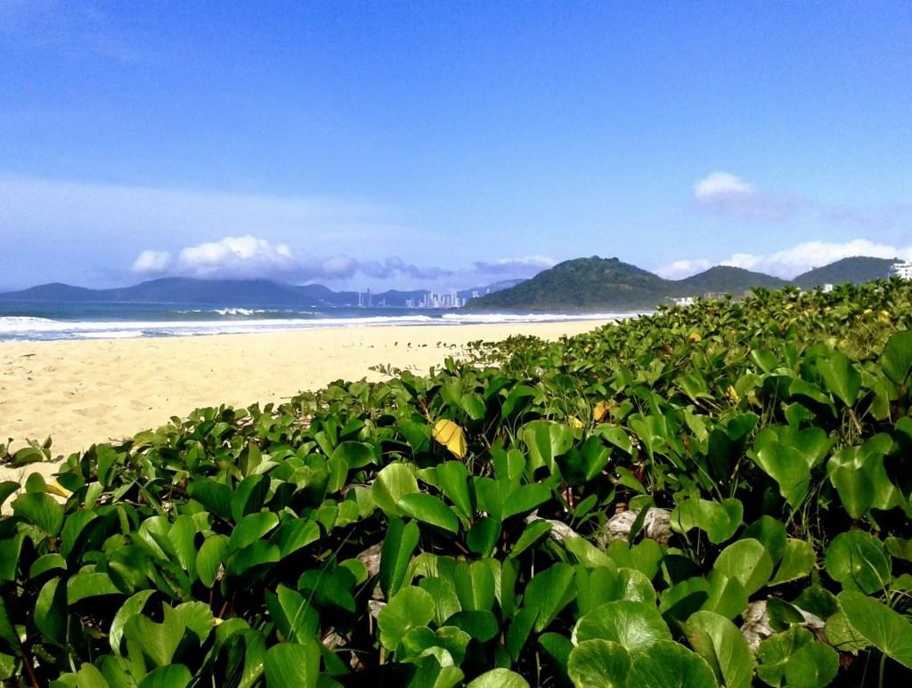 Praia Brava.