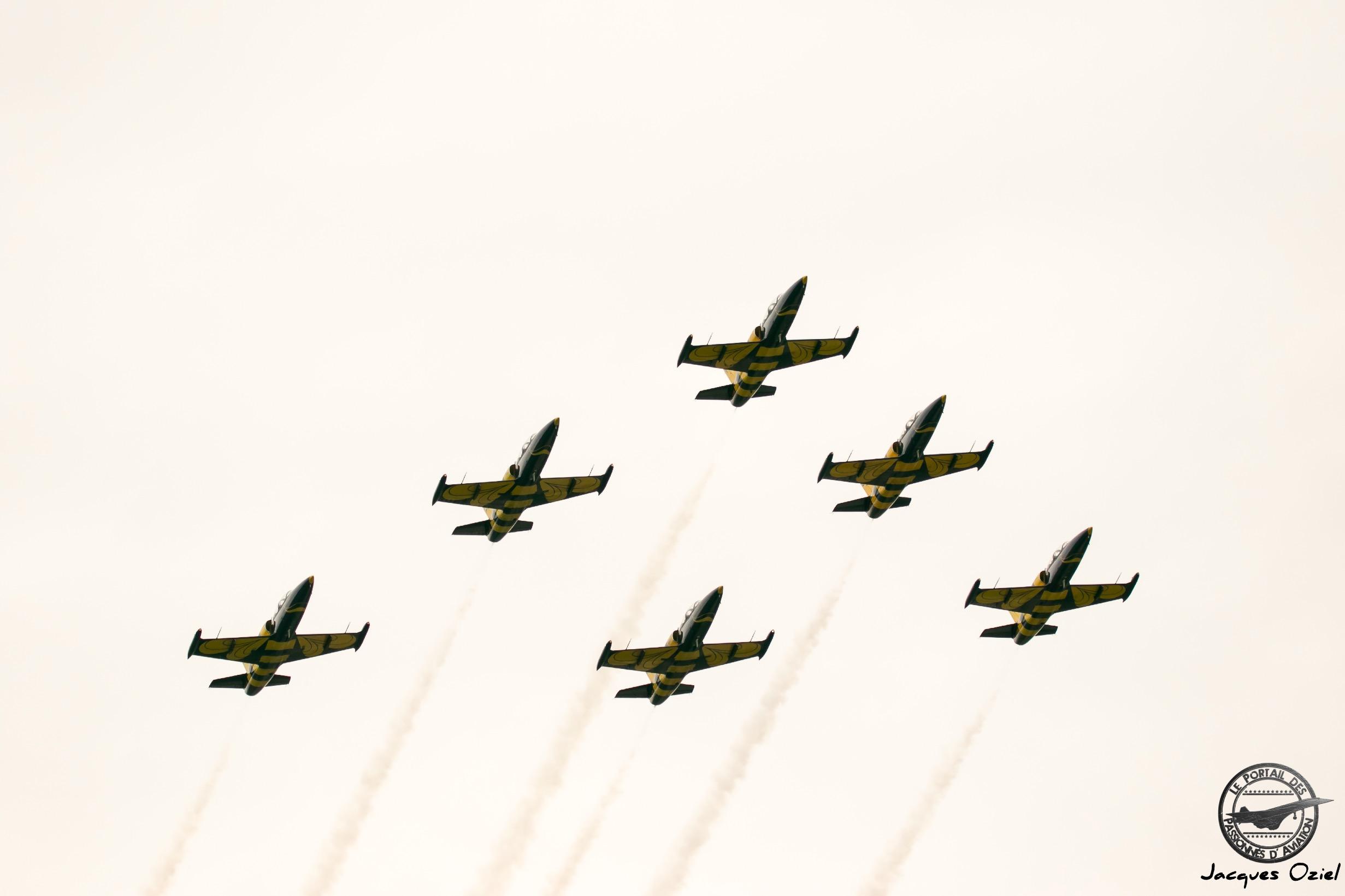 Aero L-39 de l'équipe acrobatique civile lettone des Abeilles Baltes, Baltic Bees