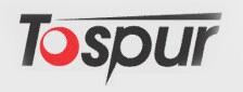 logo topsur