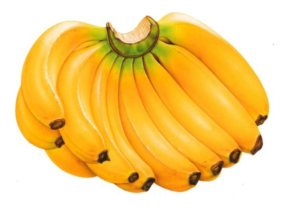 Um dos alimentos mais consumidos no Brasil, a banana ajuda a emagrecer e faz bem ao coração. Quando ela ainda está um pouco verde, tem maiores concentrações do amido que acelera o metabolismo