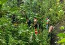 Rescatan grave a un hombre que cayó al barranco Los Lobos en Quesería