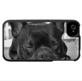 capinha_iphone_cachorro3