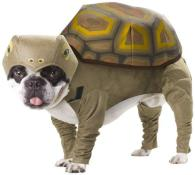 12-best-halloween-costumes-for-pets-2012-funn-L-6KgPW0