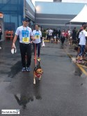 sp-dog-run-48