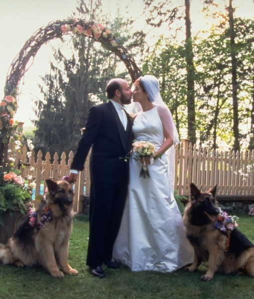 cachorros-casamentos-16