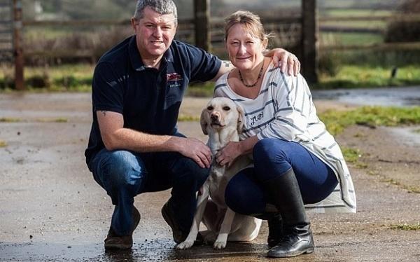 Mark e Linda Humphrey com a cachorra Mazie. (Foto: Reprodução / Bark Post)