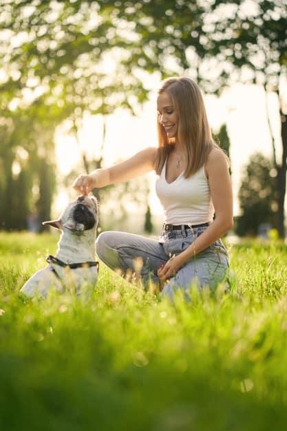 Como estimular o faro do cachorro