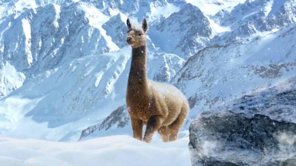 JC4 Llama In Alpine