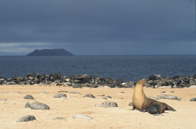Parco delle Galapagos