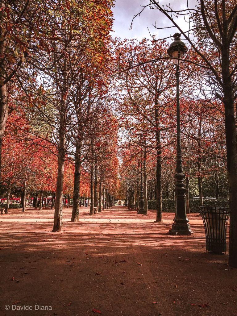 visitare i Jardin de Tuileries in ottobre