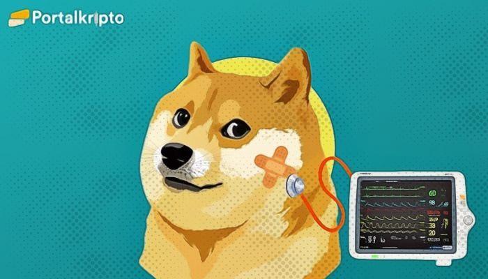 harga doge