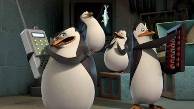 Photo of Pré-Estréia – série Os Pinguins de Madagascar este mês na Nickelodeon