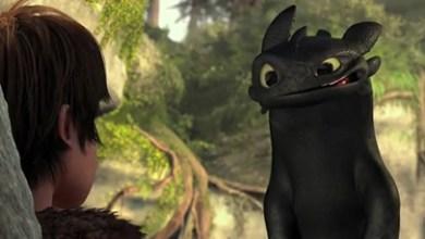 Foto de Cinema 2010: DreamWorks libera o primeiro trailer de How to Train Your Dragon!