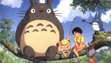 Foto de Wallpaper do dia: Tonari no Totoro!