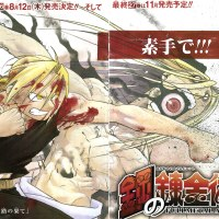 Especial: Final Épico de Fullmetal Alchemist! [Manga]