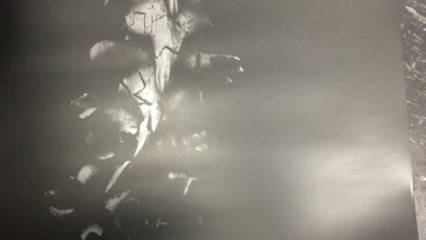 Photo of Postando uma imagem… só porque curti! (Mortal Kombat)