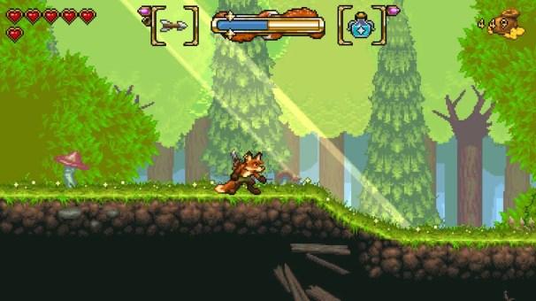 Fox N Forest 11