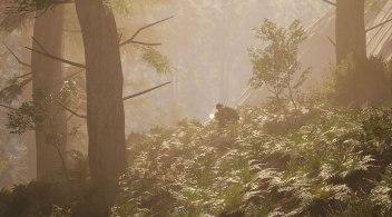 SCUM - Hazy Forest