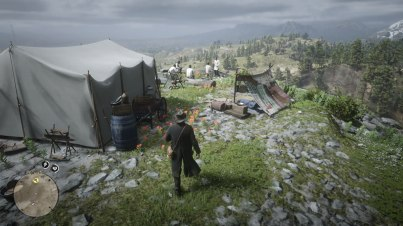 Red Dead Redemption 2 (23)