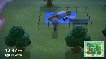 Animal Crossing New Horizons - 60