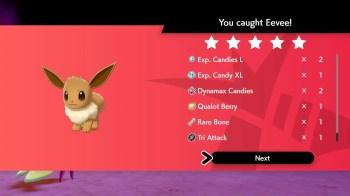 Pokemon Gigantamax Eevee (11)