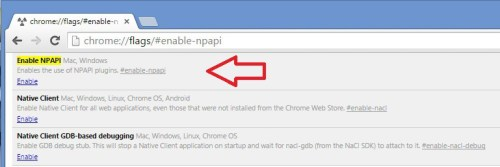 enable-npapi 2 - Chrome