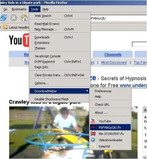 DownloadHelper  descarga contenidos con un sólo clic desde cualquier web