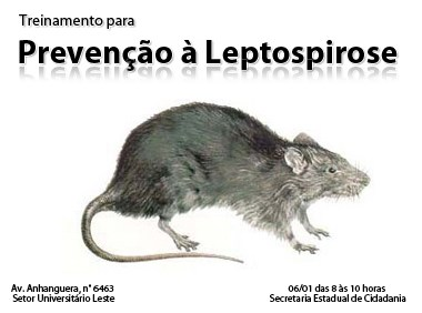 Agentes de Zoonoses combatem os ratos no Subúrbio Ferroviário