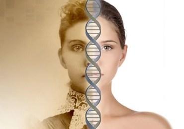 Comitê bioético teme experiências genéticas