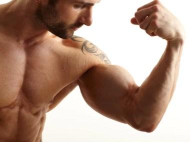 Turbine seus bíceps