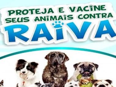 Vacinação antirrábica