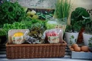 Como retirar agrotóxico de frutas e verduras
