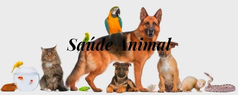 Encerra nesta quarta-feira (10) o prazo para cadastro de Entidades para o Conselho de Proteção dos Animais