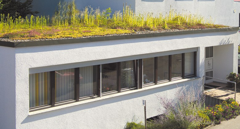 Bióloga cria substrato para telhado verde com bagaço de cana e fibra de coco